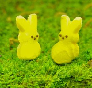 peep bunnies