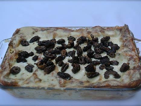 morel mushroom lasagna